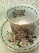 "Coffee Cup and saucer ""seasons""New"