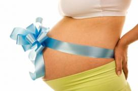 Offer of cooperation for a surrogate mother and donor