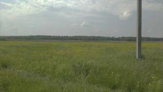 Sell land on the shore of the river Mja